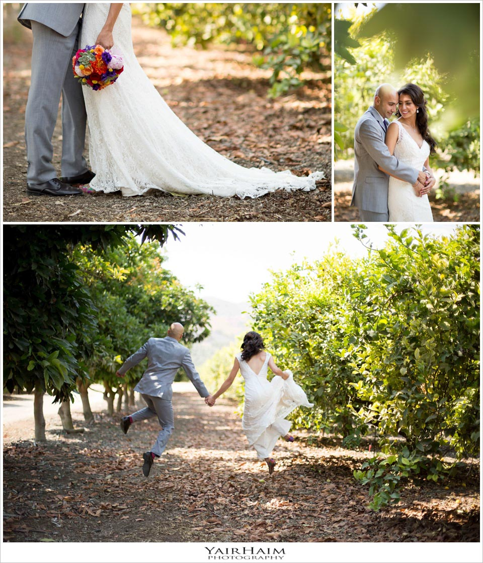 limoneira-ranch-wedding-photos-Yair-Haim-photographer-Los-Angeles-22